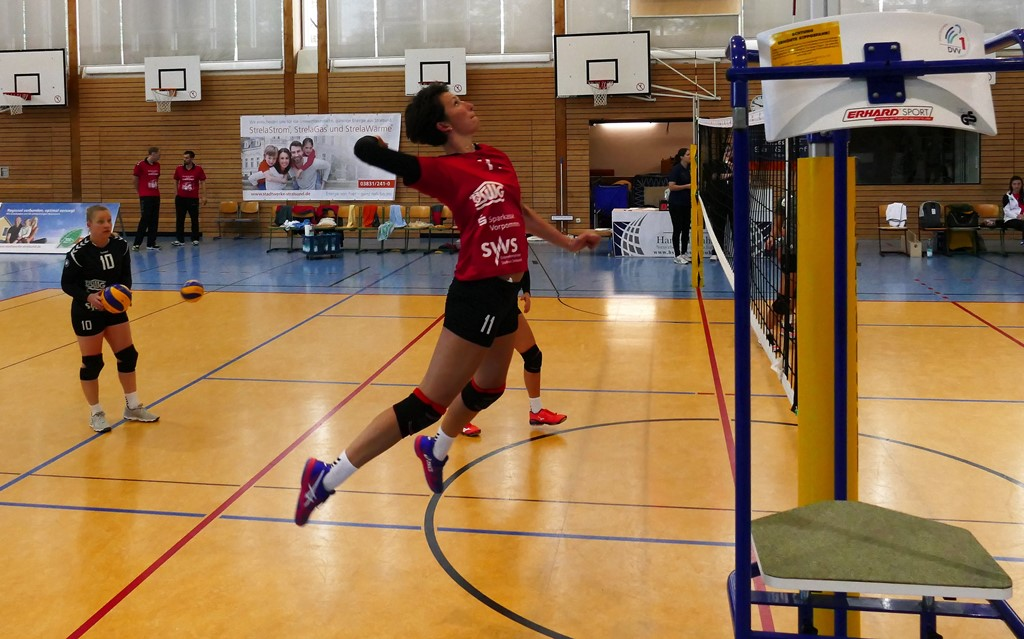 Stralsunder Wildcats gegen VCO Schwerin