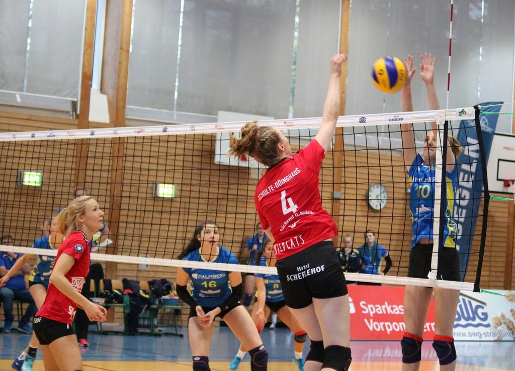 Stralsunder Wildcats gegen den VCO Schwerin