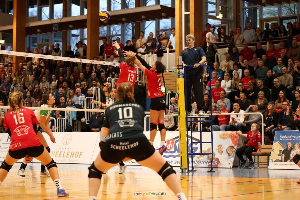 Wildcats vs Münster im Pokal