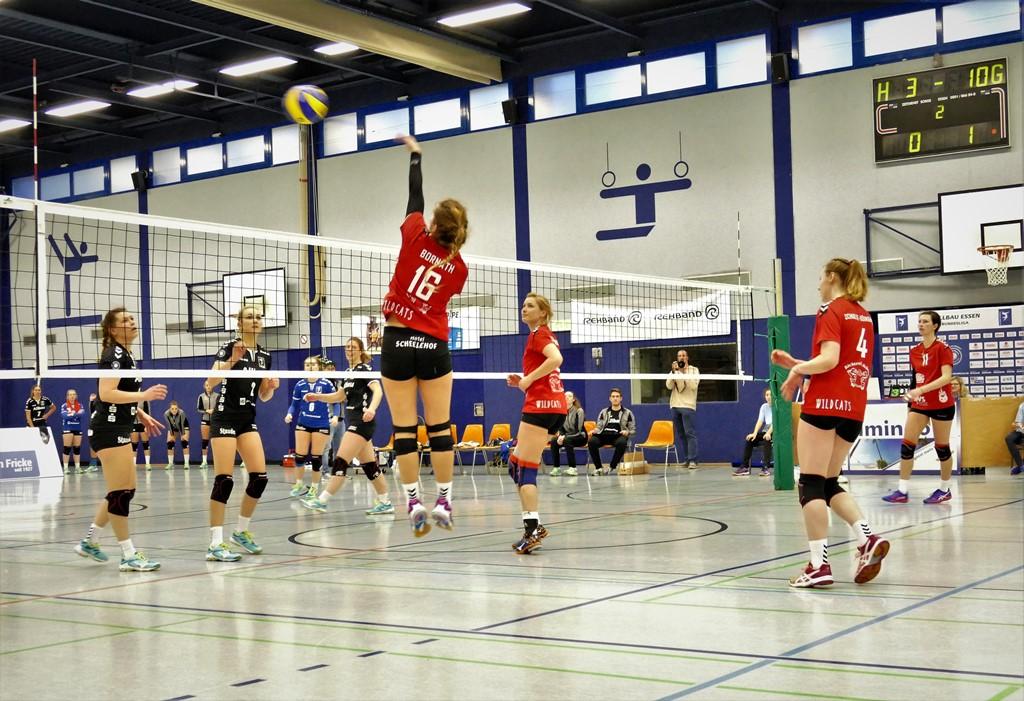 Volleyballerinnen dominieren in Essen und siegen 3:0